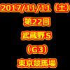 武蔵野S 2017 データ分析 出走予定馬 血統 動画 有名人予想