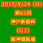 第65回 神戸新聞杯(GII) 2017年9月24日(日) 4回阪神7日