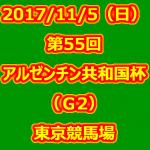 第55回アルゼンチン共和国杯(GII) 2017年11月5日(日) 5回東京11日