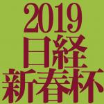 日経新春杯 2019 データ分析 出走予定馬 血統 動画 有名人予想