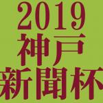 神戸新聞杯 2019 データ分析 出走予定馬 血統 動画 有名人予想
