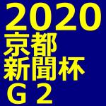 京都新聞杯 2020 データ分析 出走予定馬 血統 動画 有名人予想