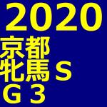 京都牝馬ステークス 2020 データ分析 出走予定馬 血統 動画 有名人予想