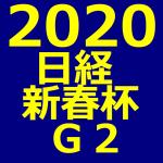 日経新春杯 2020 データ分析 出走予定馬 血統 動画 有名人予想