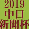 中日新聞杯 2019 データ分析 出走予定馬 血統 動画 有名人予想