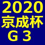 京成杯 2020 データ分析 出走予定馬 血統 動画 有名人予想