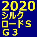 シルクロードステークス 2020 データ分析 出走予定馬 血統 動画 有名人予想
